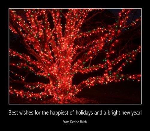 d-bush_holiday-greeting4