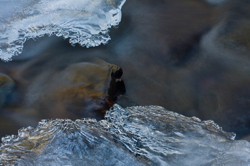 I was especially interested in the ice forming in the swift and very cold streams.