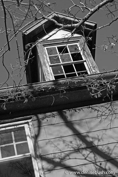 Attic Window © 2009 Denise Bush