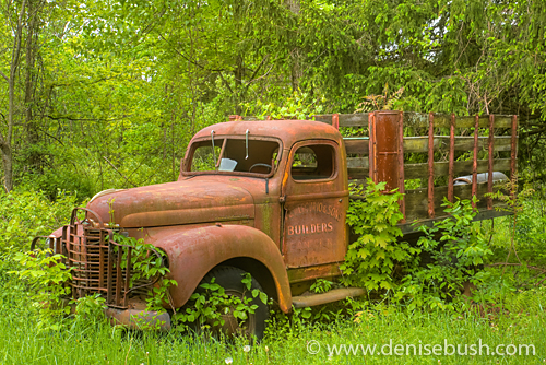 'DeAmercurio & Sons Truck' © Denise Bush