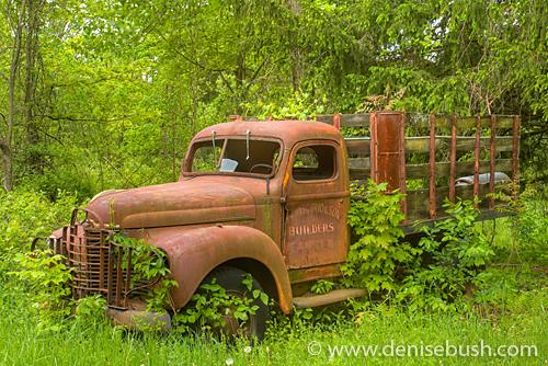 'DeAmercurio & Sons Truck' © Denise Bush