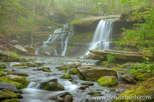 'Diamond Knotch Falls' © Denise Bush