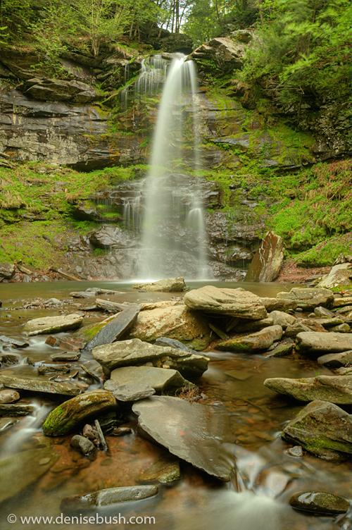 'Plattekill Falls' © Denise Bush
