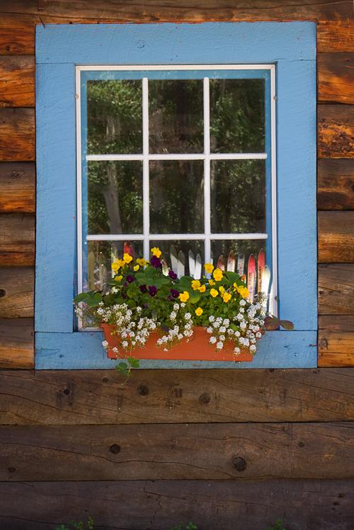 'Crested Butte Window'  Denise Bush