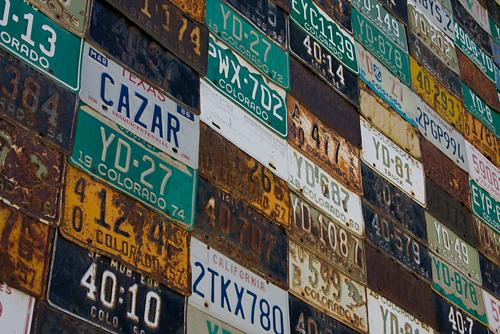 'Licesne Plate Wall' (Local Coffee Shop) Denise Bush