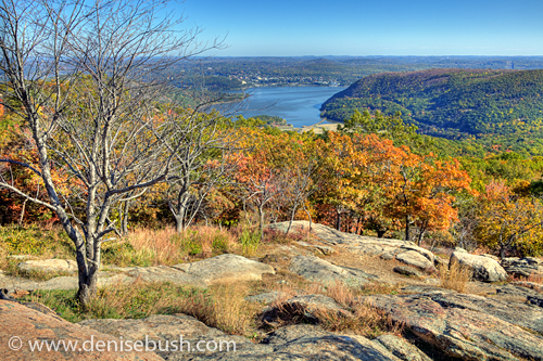 'Hudson Valley View' © Denise Bush