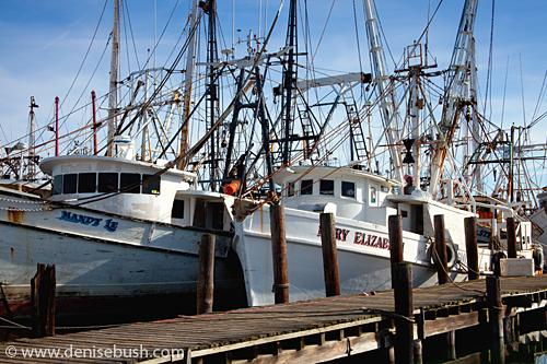 D Bush_Trespassing at the Shipyard 2280
