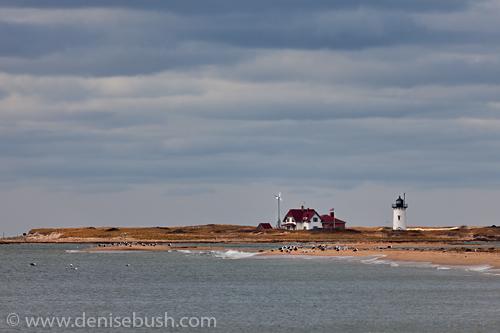'Beachside Lighthouse'  © Denise Bush
