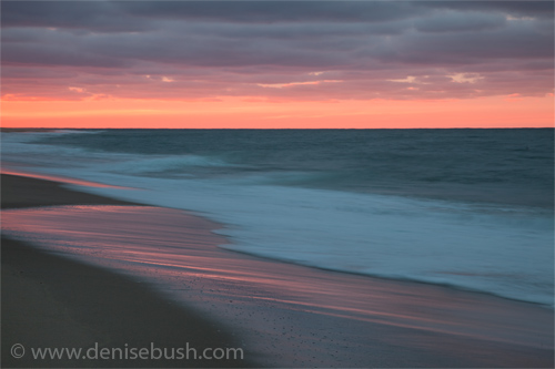 'Race Point Sunset II'  © Denise Bush