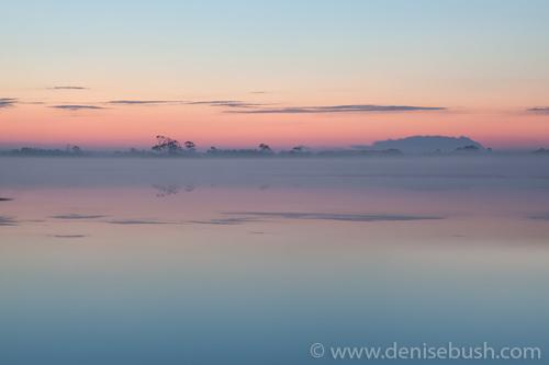 'Snow Goose Pool Before Sunrise'  © Denise Bush