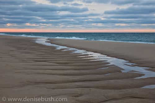 'Tidal Stream'  © Denise Bush