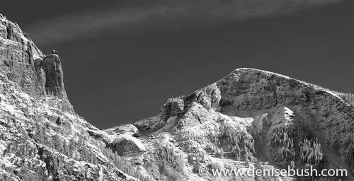 'Canyon Peaks'  © Denise Bush