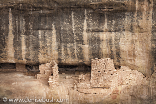 'Cliff Dwelling Remains'  © Denise Bush