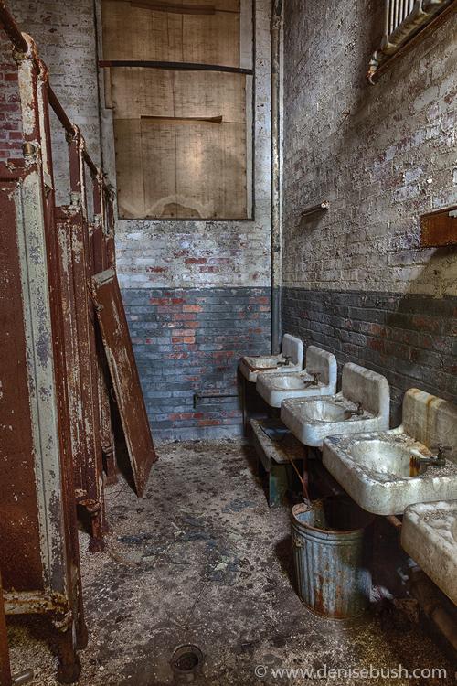 'Ladies Toilet'  © Denise Bush