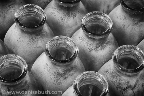 'Dusty Bottles'  © Denise Bush