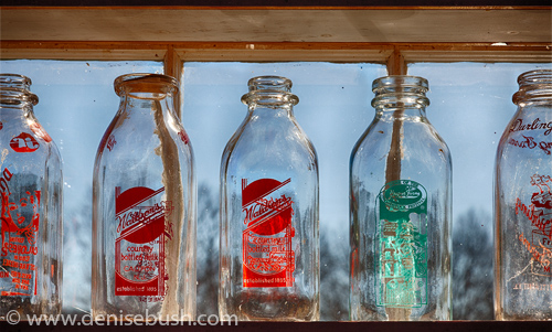 'Milk Bottles'  © Denise Bush
