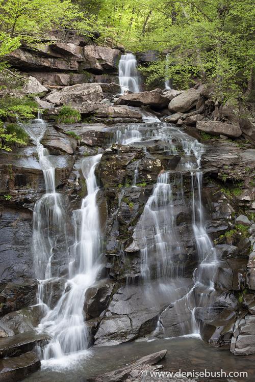 'Bastion Falls Overview'  © Denise Bush