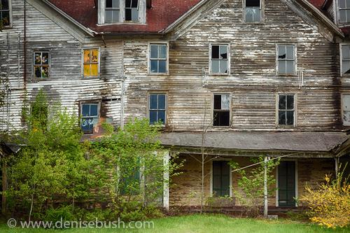 'Cold Springs Hotel Windows'  © Denise Bush