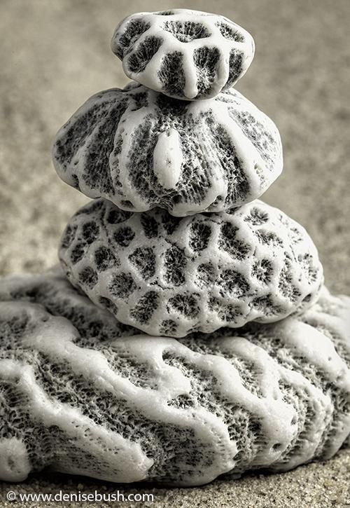 'Coral Cairn'  © Denise Bush