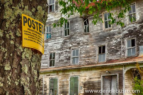 'Posted'  © Denise Bush