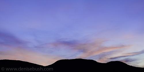 'Sunset Silhouette'  © Denise Bush