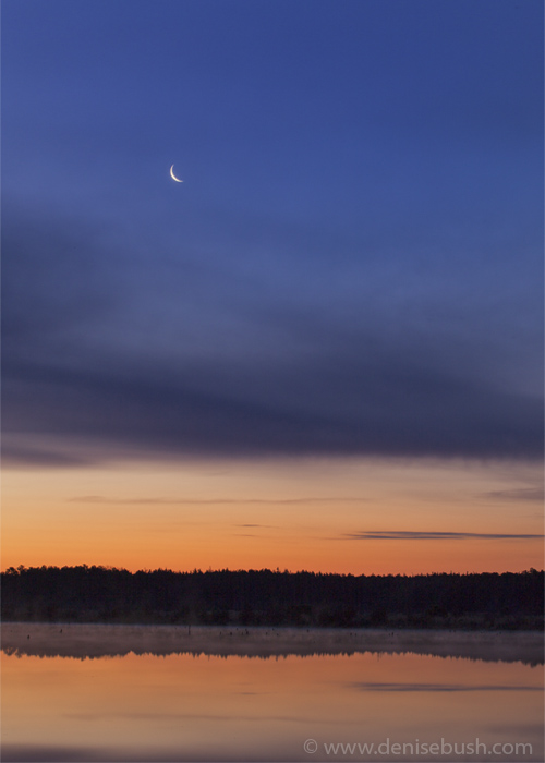 'Moon Over The Reservoir'  © Denise Bush