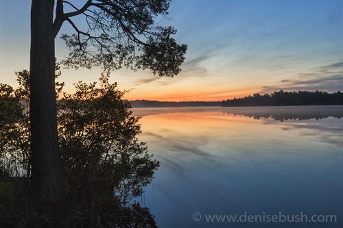 'Sunrise Silhouette'  © Denise Bush