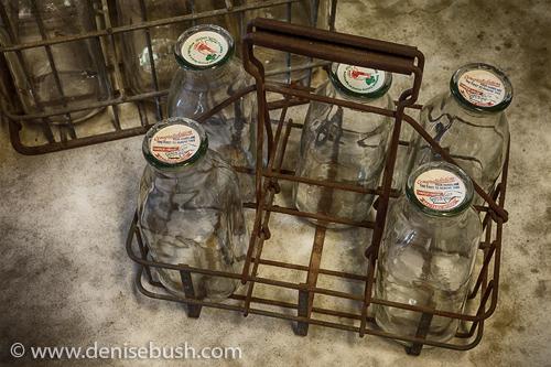 'Milk Bottles'  © Denise Bush