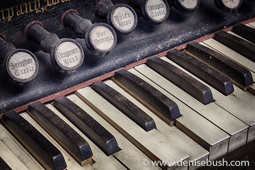 'Old Organ Close-up'  © Denise Bush