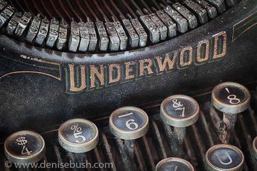 'Underwood Close-up'  © Denise Bush