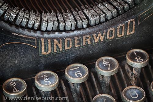 'Underwood Close-up'  © Denise Bush