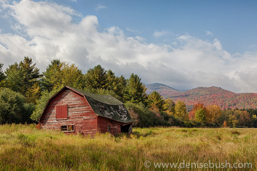 'Adirondack Barn'  © Denise Bush