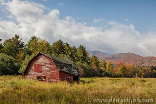 'Adirondack Barn'  © Denise Bush