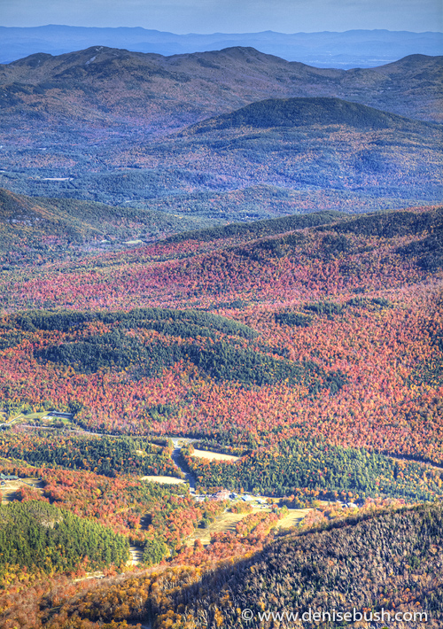 'Adirondack Tapestry'  © Denise Bush