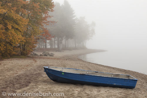 'Blue Rowboat'  © Denise Bush