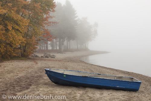 'Blue Rowboat'  © Denise Bush