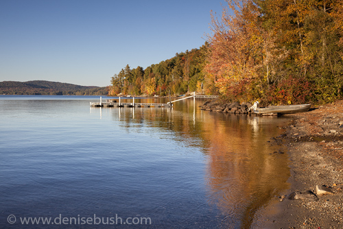 'Schroon Lake Shoreline'  © Denise Bush