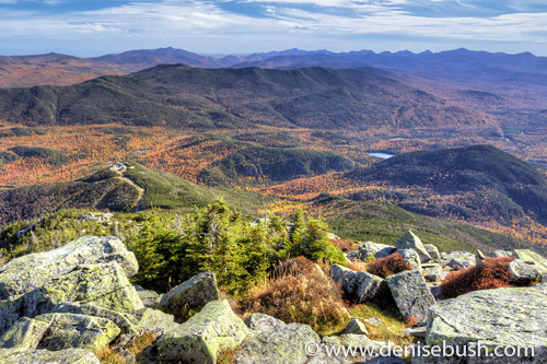 'Whiteface View'  © Denise Bush