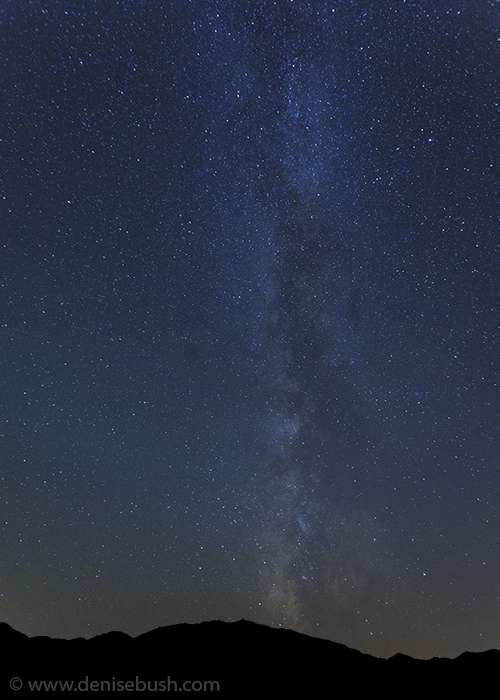 'Adirondack Milky Way'  © Denise Bush