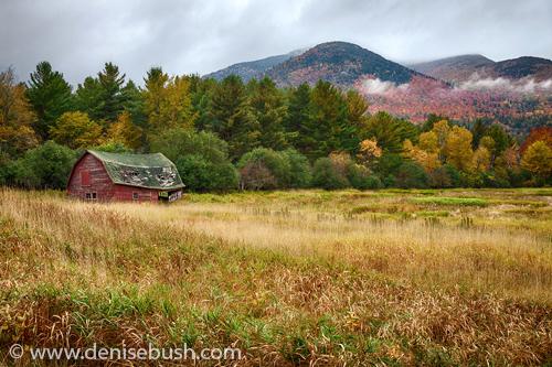 'Red Barn In The Morning'  © Denise Bush