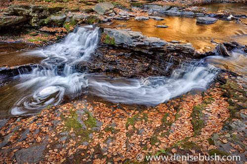 'Cascade With Autumn Reflections'  © Denise Bush