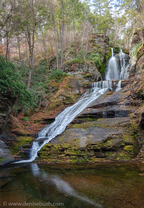 'Dingman's Falls'  © Denise Bush