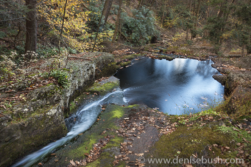 'Pool At Tillman's Ravine'  © Denise Bush
