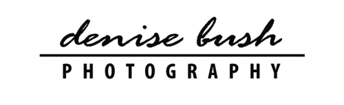 denise bush photography