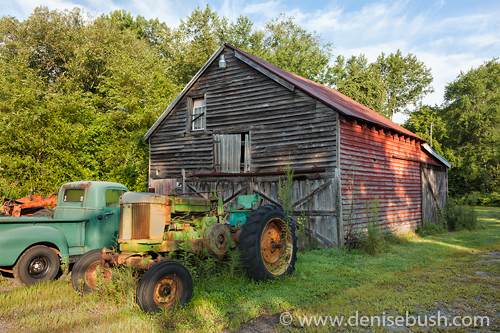 'Rural Relics'  © Denise Bush
