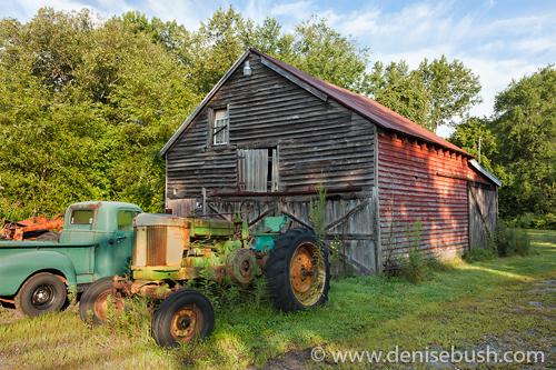 'Rural Relics'  © Denise Bush
