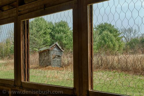 'Coop & Crib'  © Denise Bush