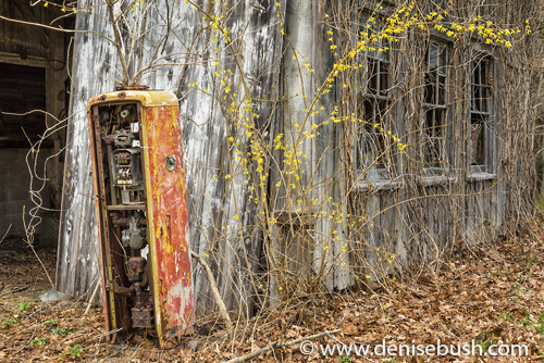 'Old Time Garage'  © Denise Bush