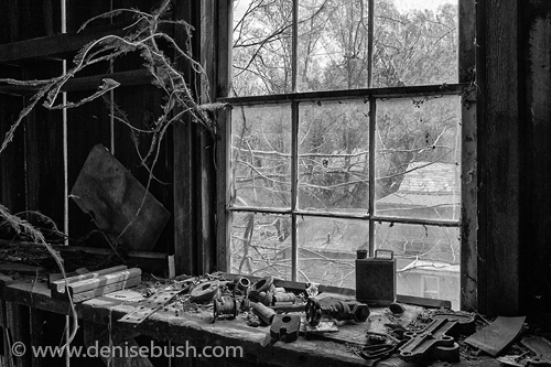 'Workbench'  © Denise Bush