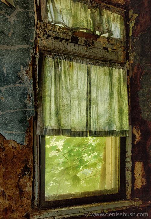 'Outside These Walls'  © Denise Bush